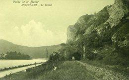 BELGIUM - Anseremme - Vallee De La Meuse Le Tunnel - Railway View Etc - Dinant