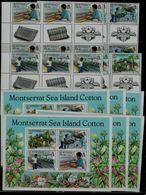 MONTSERRAT 1985 SEA ISLAND COTTON WITH GUTTER BLOCK OF 6+6 BLOCK MI No 586-9+BLOCK 33 MNH VF!! - Montserrat