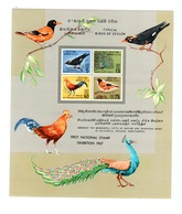 Sri Lanka - Typical Birds Of Ceylan, Miniature Sheet SG 500 N** MNH - Sri Lanka (Ceylon) (1948-...)