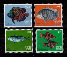 Sri Lanka - YV 446 à 449 N** MNH Complete Poissons / Fishes 1972 - Sri Lanka (Ceylon) (1948-...)