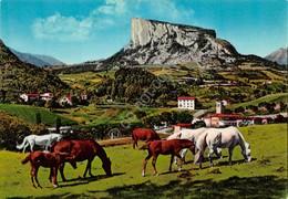 Cartolina Appennino Reggiano Pietra Di Bimantova Panorama Con Cavalli 1978 - Reggio Emilia