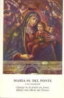Santino Maria Ss. Del Ponte - Caltagirone - Images Religieuses
