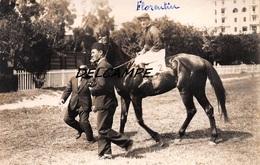 "EGYPTE- ALEXANDRIE- Champ De Courses Propriétaires Cheval ""FLORENTIN"" Et Son Jockey. Carte Photo Zachary's Press Agency - Horse Show"
