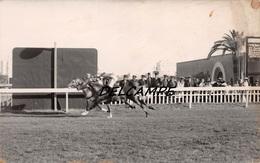 EGYPTE- ALEXANDRIE-Champ De Courses L'Arrivée Au Poteau De Yanis (?) Carte Photo Zachary's Press Agency 1937 - Horse Show