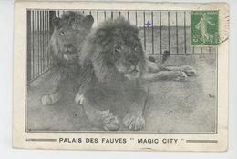"""SPECTACLE - CIRQUE - PARIS - PALAIS DES FAUVES """"MAGIC CITY """" ( Lions En Cage ) - Circo"""