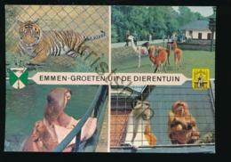 Emmen - De Dierentuin - ZOO [Z03-5.643 - Netherlands