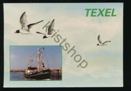 Texel - Garnalenvisser [Z03-5.891 - Netherlands
