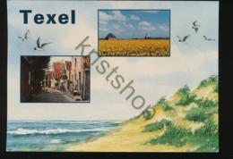 Texel - Straatje [Z03-5.892 - Pays-Bas