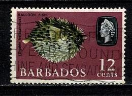 Barbados 1965 Yv 250 Balloon Fish - Used - Barbados (...-1966)