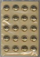 20 BOUTONS TDM 20 Mm - Boutons