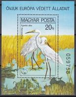 Ungarn 1980 - Mi.Nr. Block 146 A  - Postfrisch MNH - Tiere Animals Vögel Birds Reiher - Cranes And Other Gruiformes
