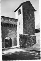 04 COLMARS LES ALPES - Les Remparts Et La Porte De Savoie - SM - Autres Communes