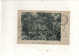 République Centrafricaine Ou Centrafrique : Le Saignage Des Lianes Pour La Récolte De Caoutchouc En 1910 (animé) PF - Central African Republic