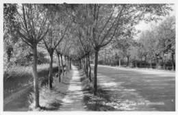 Knocke-Zoute - Une Jolie Promenade - Knokke