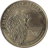 2020 AB102 - PIERRELATTE - Ferme Aux Crocodiles 7 (Calao à Joues Argent) / ARTHUS BERTRAND - Arthus Bertrand