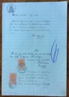 CARBONARA (BARI) 12/11/1909 - DOCUMENTO   IN CARTA BOLLATA E MARCHE DA BOLLO CON TIMBRI E FIRME - Historical Documents