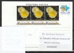 Ukraine 2020, Postkarte, Gelaufen, Kaktus  Maihuania / Ukraina 2020, Postcard, Used, Cactus Maihuania - Sukkulenten