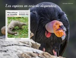 Guinea 2020, Animals In Danger, Pangolin, Condor, BF - Aigles & Rapaces Diurnes