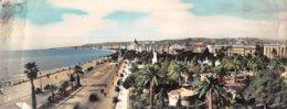 G.F.20-059 : CARTE PANORAMIQUE DE NICE - Nizza