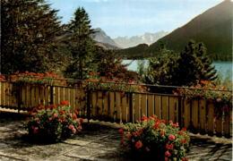 Blick Vom Kurhaus Ländli, Oberägeri Auf Den Aegerisee Und Die Alpen (20361) * 22. 8. 1980 - ZG Zoug
