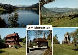 Am Morgarten - 5 Bilder (0923) - ZG Zoug