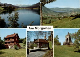 Am Morgarten - 5 Bilder (0923) * 4. 4. 1982 - ZG Zoug