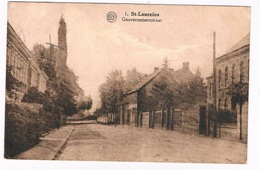 B-7809  SINT-LAUREINS : Gouvernementstraat - Sint-Laureins