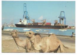 CP DJIBOUTI, TERMINAL CONTAINER, DROMADAIRES, REPUBLIQUE DE DJIBOUTI - Djibouti