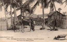 Saint Louis - Senegal