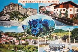 Cartolina - Castelnovo Ne'Monti - 1972 - Reggio Emilia