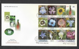 INDIA, 2013,  FDC,  Wild Flowers Of India,  Sheetlet Of 12 Stamps, Jabalpur Cancellation - FDC