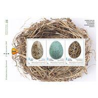 D(B) 187 ++ 2019 NETHERLANDS NEDERLAND BIRDS EGGS VOGEL EIEREN POSTFRIS NEUF MNH ** - Unused Stamps