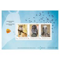 D(B) 187 ++ 2019 NETHERLANDS NEDERLAND BIRDS VOGELS UIL OWL UHLE POSTFRIS NEUF MNH ** - Unused Stamps