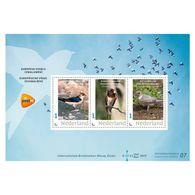 D(B) 187 ++ 2019 NETHERLANDS NEDERLAND BIRDS VOGELS ZWALUW SCHWALBE POSTFRIS NEUF MNH ** - Unused Stamps