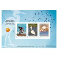 D(B) 187 ++ 2019 NETHERLANDS NEDERLAND WATERBIRDS WATERVOGELS  POSTFRIS NEUF MNH ** - Unused Stamps
