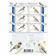 D(B) 187 ++ 2019 NETHERLANDS NEDERLAND VOGELS OISEAUX BIRDS POSTFRIS NEUF MNH ** - Unused Stamps
