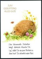 D6281 - TOP Glückwunschkarte Geburtstag - Igel Marienkäfer - Geburtstag