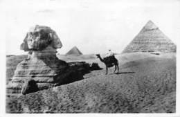 Egypte Egypt  Sphinx  And Piramid Pyramid Piramide  Photo Foto   M 3460 - Sphinx