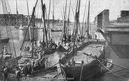 Egypt Egypte  Caïro Cairo Groupe De Barques Passant Le Pont       M 3520 - Cairo