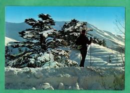 Liban Lebanon Silhouette Of A Ski Trainer Silhouette D ' Un Moniteur De Ski - Liban