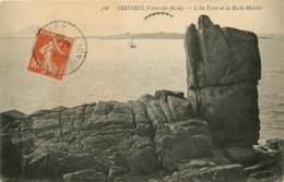 Trestrel, L'Ile Torné, Roche Molaire (scan Recto-verso) KEVREN0161 - Autres Communes