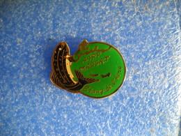 982   PINS Pin's  PÊCHE AAPP MASSAT  09 TRUITE Étang De L Hers - Badges