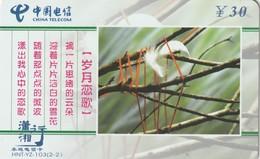 TARJETA TELEFONICA DE CHINA. BRANCHES. HNT-YZ-103(2-2). (1418) - China