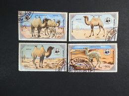 Mongolia 1985 The Bactrian Camel - Mongolia