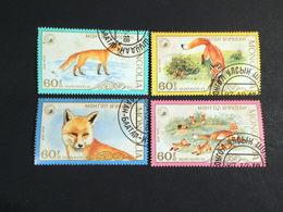 Mongolia 1987 The Red Fox - Mongolia