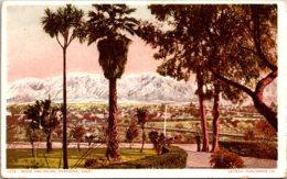 California Pasadena Snow And Palms Detroit Publishing - United States