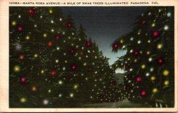California Pasadena Santa Rosa Avenue A Mile Of Xmas Trees Illuminated - United States