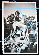 Ancienne Photo - Des Enfants Au Parc De Bellefrise Sur La Statue Des Lévriers - Champagnole - Jura 39 - 8,5 X 6 Cm - Lieux