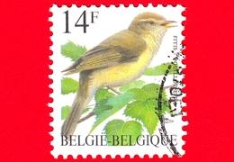 BELGIO - Usato - 1995 - Uccelli Di Buzin - Luì Grosso - Phylloscopus Trochilus - 14 - 1985-.. Vogels (Buzin)