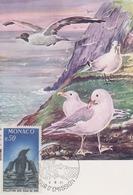 Carte Maximum  1er  Jour   MONACO   Combat  Contre  La  Pollution  Des  Mers  1977 - Environment & Climate Protection